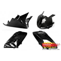 Ilmberger Carbon complete Race fairing BMW S1000RR 2015 2016